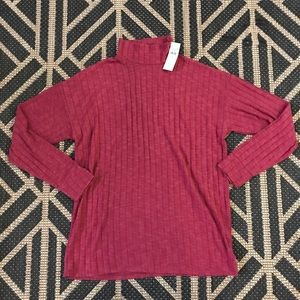 American Eagle Outfitters Turtleneck Top